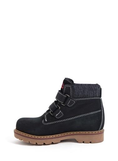 U.S.Polo Assn. Ayakkabı Siyah